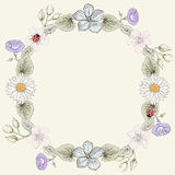 花卉框架葡萄酒板刻样式 库存照片