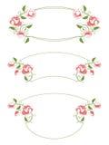 花卉框架装饰图案 免版税图库摄影