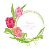 花卉框架设置与花郁金香花束。设计花卉元素 免版税库存照片