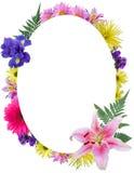 花卉框架长圆形 图库摄影