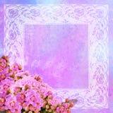 花卉框架风格化葡萄酒 库存图片
