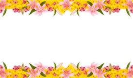 花卉框架 免版税库存照片