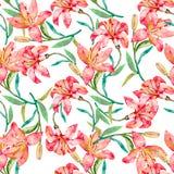 花卉模式无缝的向量墙纸 百合花 向量例证