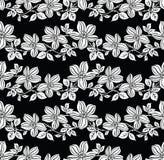 花卉模式无缝的向量墙纸 库存照片