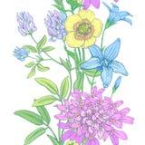 花卉模式无缝的向量墙纸 图库摄影