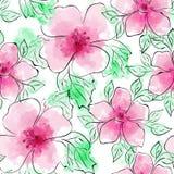 花卉模式无缝的向量 与桃红色花的花纹花样在白色背景 水彩模仿和墨水 免版税库存图片