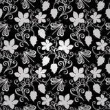 花卉模式无缝的向量 免版税库存照片