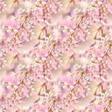 花卉模式无缝的春天 与开花树枝的无缝的自然纹理 Spingtime在庭院里 开花的枝杈 免版税库存照片