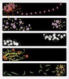 花卉横幅 免版税库存图片