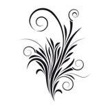 花卉漩涡向量 图库摄影