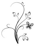 花卉漩涡 图库摄影