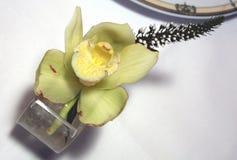 花卉焦点 图库摄影
