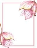花卉看板卡要素 向量例证