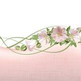 花卉看板卡 向量例证