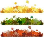 花卉秋天横幅 库存图片