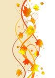 花卉秋天背景 皇族释放例证