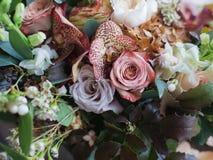 花卉纹理背景 库存图片