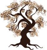 花卉结构树 免版税库存照片