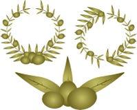 花卉绿橄榄 免版税图库摄影