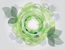 花卉绿色漩涡 免版税库存图片