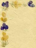 花卉羊皮纸 免版税库存照片