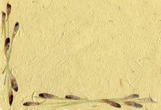 花卉羊皮纸 免版税库存图片