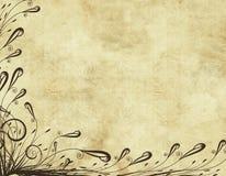 花卉老羊皮纸 免版税图库摄影