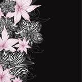 花卉背景。柔和的花纹花样。 库存图片
