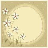 花卉背景。 库存图片
