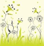 花卉背景。 图库摄影