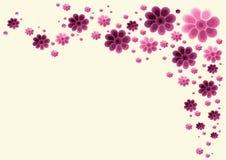 花卉背景设计 库存图片
