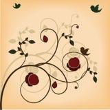 花卉背景设计 图库摄影