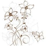 花卉背景,向量例证 库存图片