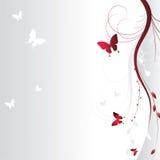花卉背景 免版税图库摄影