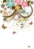 花卉背景 库存图片