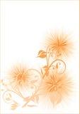 花卉背景 库存例证