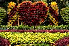 花卉艺术 免版税图库摄影