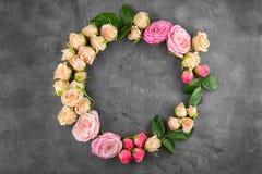 花卉花圈框架 库存图片