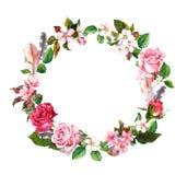 花卉花圈用苹果、樱桃花、佐仓开花、玫瑰花和羽毛 水彩圆的边界 库存照片
