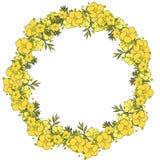 花卉花圈由异乎寻常的花制成 免版税库存照片