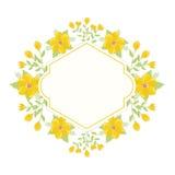 花卉花圈背景 库存照片
