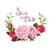 花卉花圈-桃红色牡丹花 保存婚姻的日期卡片 水彩 库存图片