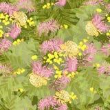 花卉菊花和含羞草花减速火箭的葡萄酒背景 库存例证