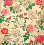 花卉葡萄酒墙纸 图库摄影