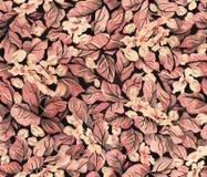 花卉葡萄酒无缝的样式 纸、纺织品、墙纸和文具的模板 库存照片