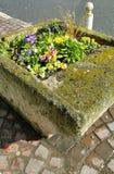 花卉街道装饰 库存照片