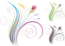 花卉装饰物 向量例证