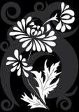 花卉装饰 免版税图库摄影
