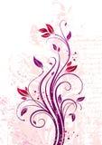花卉要素 图库摄影