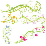 花卉要素 库存照片